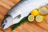 Salmon fish close up — Stock Photo