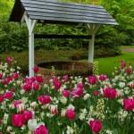 Well in garden — Stock Photo