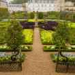 Garden in Villandry chateau, France — Stock Photo