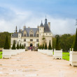 Chenonceau chateau, France — Stock Photo #17438555