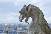 Gargoyle of Notre Dame Cathedral — Stock Photo