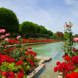 Stock Photo: Gardens at Alcazar, Cordoba, Spain