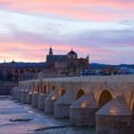 Cathedral and roman bridge, Cordoba, Spain — Stock Photo #18158347