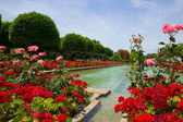 Gardens at the Alcazar, Cordoba, Spain — Stock Photo