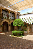 院子里的科尔多瓦,西安大路,西班牙 — 图库照片