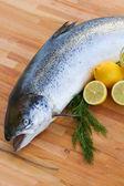 Atlantic Salmon fish close up — Stock Photo