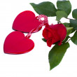 Two glass hearts with red rose — Stock Photo