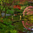 Japanese garden with bridge — Stock Photo