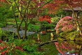 Japanse tuin in het voorjaar van — Stockfoto