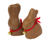Chocolate bunnies — Stock Photo