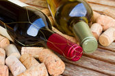 White and red wine bottles — Stock Photo