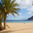 Stock Photo: Beach las Teresitas, Tenerife