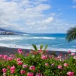 Beach playa Jardin, Tenerife, Spain — Stock Photo