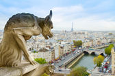 Gargoyle of Paris — Stock Photo