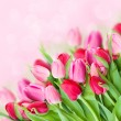 Spring pink tulips bouquet — Stock Photo