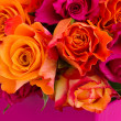 Rose bouquet close up — Foto Stock