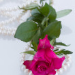 One pink rose with pearls - Stock Photo