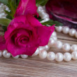 Pink rose with pearls — Stockfoto #22573129