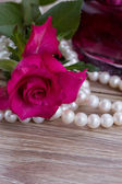 Pink rose with pearls — Stock Photo