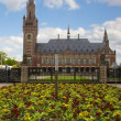 图库照片: Peace Palace in Hague, Netherlands