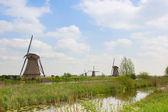 Dutch windmills in summer day — Stock Photo