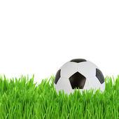 Soccer ball in grass — Stock Photo