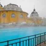 Szechenyi spa bath, Budapest — Stock Photo #23090708