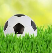 Piłka w trawie — Zdjęcie stockowe