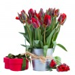 Stock Photo: Spring tulip flowers in pot with gift box