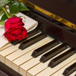 Rose with notes paper on piano — Stock Photo