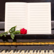 Open empty notes paper with red rose — Stock Photo