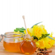 Floral honey on white — Stock Photo