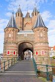 Amsterdamse poort, haarlem, hollanda — Stok fotoğraf