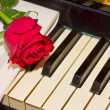 Red rose with notes paper on piano — Stock Photo