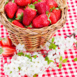 Strawberry in basket and spring  flowers — Stock Photo