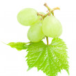 Sweet and ripe grapes — Stock Photo