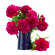 Bouquet of peonies in blue pot — Stock Photo #26010403