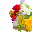 Posy of freesias flowers — Stock Photo