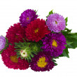 Stock Photo: Bouquet of red and violet aster flowers