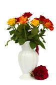 Multicolored roses in vase — Stock Photo