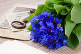 Old photos and corn flowers — Stockfoto