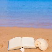 海海岸に帳を開く — ストック写真