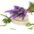 Lavender and soap — Stockfoto #27029591