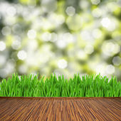 Wooden planks with green grass — Stock Photo