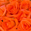 Stock Photo: Bouquet of orange roses