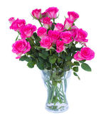 Pink roses in vase — Stock Photo