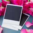 Fresh roses with instant photos — Stock Photo