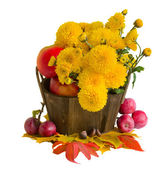 Bouquet of yellow mums with apples — Stock Photo