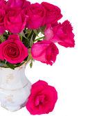 Mauve rozen posy close-up — Stockfoto