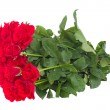 Bouquet of scarlet roses — Stock Photo #29349937